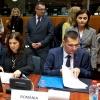 consiliul-jai-participarea-ministrilor-raluca-pruna-si-petre-toba-bruxelles-20-noiembrie-2015-1448046099.jpg